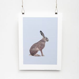 Hare Print - children's pictures & paintings