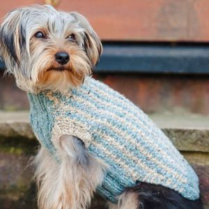 Dog Jumper Kit Toy Dog