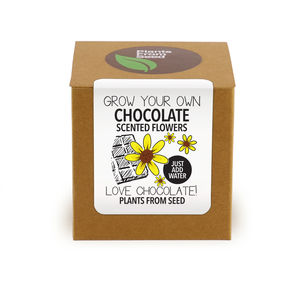 Grow Your Own Chocolate Scented Flowers Kit - seeds & bulbs