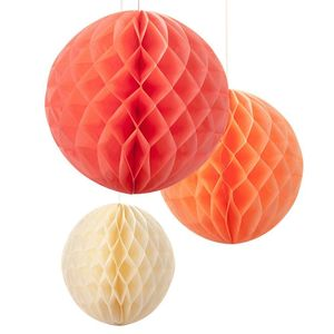 Blush Mix Honeycomb Decorations