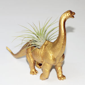 Brachiosaurus Dinosaur Planter With Plant - less ordinary garden ideas