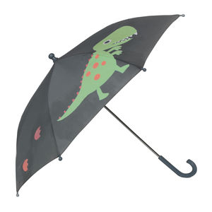 Child's Colour Changing Dino Umbrella - clothing