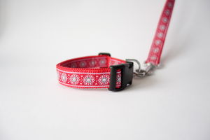 Perdi Dog Collar And Lead Set
