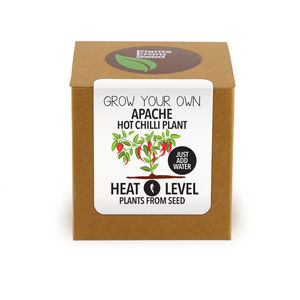 Grow Your Own Apache Chilli Plant Kit - gardening