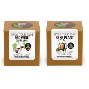 Wine And Beer Plant Kit Selection - shop by price