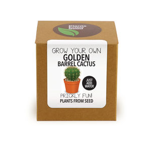 Grow Your Own Golden Barrel Cactus Kit - gifts for gardeners