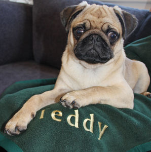 Personalised Embroidered Pet Blanket