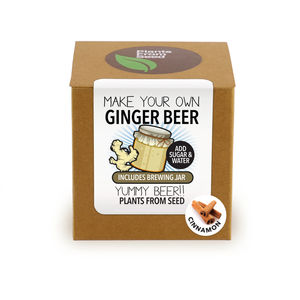Make Your Own Ginger Beer With Cinnamon Brewing Jar Kit - stocking fillers