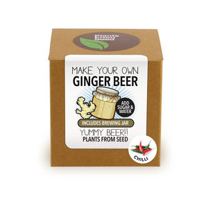 Make Your Own Ginger Beer With Chilli Brewing Jar Kit - gifts for him sale