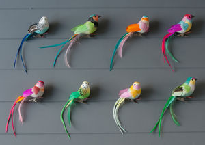 Set Of Eight Feather Bird Clip Decorations - weddings sale