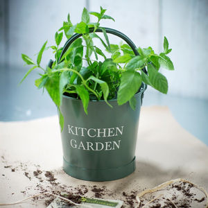 Kitchen Garden Bucket - pots & planters