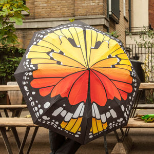 Butterfly Umbrella - umbrellas & parasols