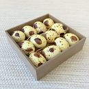 Tray of speckled quail eggs