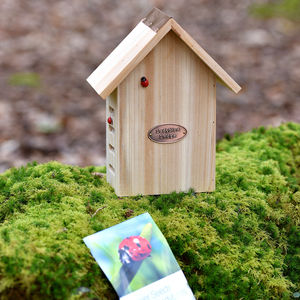 Ladybird Lodge And Flower Seeds - gardening