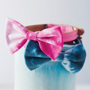 Tie Dye Pet Bow Tie - battersea dogs & cats home collection
