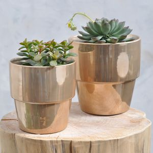 Metallic Plant Pot - view all sale items