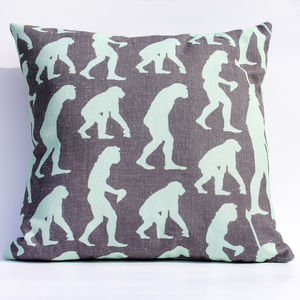 Darwin Evolution Cushion - cushions