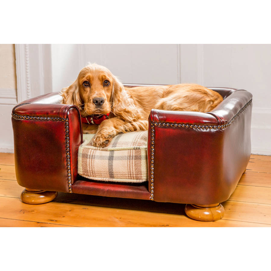 tetford chesterfield dog bed oxblood leather dog sofa by lords ...