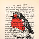 Robin Screen Print On Vintage Book Page