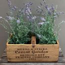 Artificial Lavender Plants In Wooden Planter