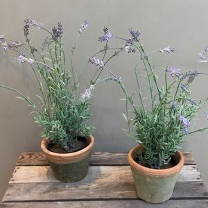 Artificial Lavender Plant In Terracotta Pot