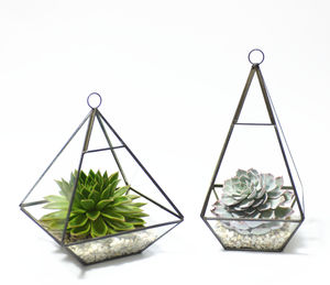 Geometric Pyramid Glass Vase Succulent Terrarium - home accessories