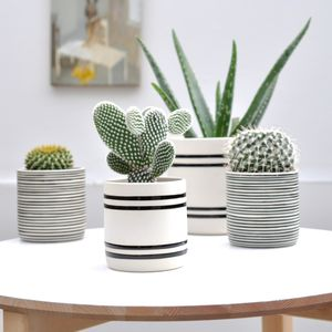Faja Handcrafted Pot - indoor plant pots