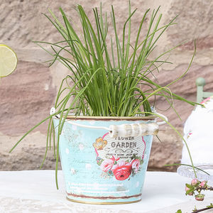 Flower Garden Metal Bucket - bins & buckets