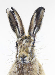 Startled Hare Mounted Giclée Print - animals & wildlife