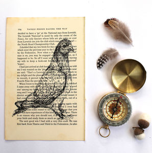 Pigeon Screen Print On Vintage Book Page - animals & wildlife