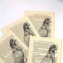 Pigeon Screen Print On Vintage Book Page