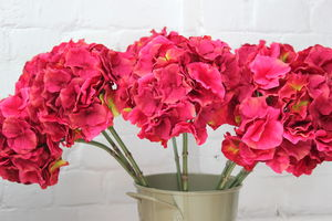 Magenta Hydrangea Flower - home accessories