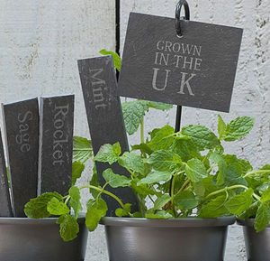 Set Of Two 'Grown In The UK ' Slate Plant Tags - garden styling