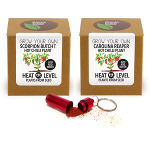 Fathers Day Chilli Plant Kits And Chilli Powder Keyring