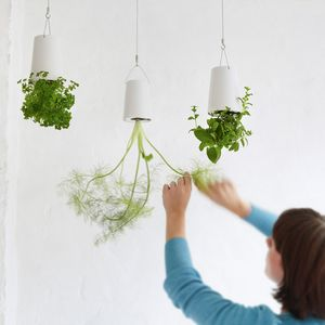 Hanging Upside Down Planters - less ordinary home updates