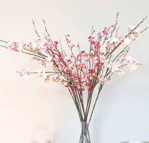 Single Stem Spring Blossom - room decorations