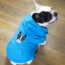 Deluxe Embroidered Winter Dog Hoodie
