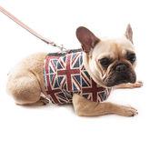 Union Jack Linen Dog Harness - pets