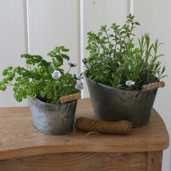 Two Mini Tub Planters