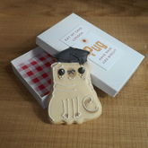 Graduation Pug - chocolates & confectionery
