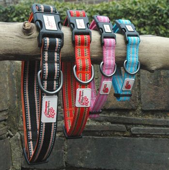 Comfort Collection Padded Dog Collar