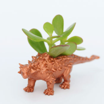 Copper Ankylosaurus Dinosaur Planter With Money Plant
