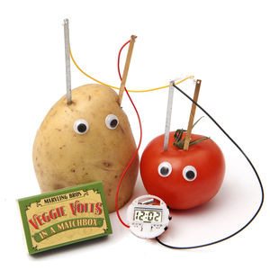 Vegetable Clock Science Kit In A Matchbox - stocking fillers