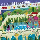 Observation Puzzle