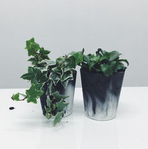 Black Marbled Cement Plant Pot - flowers & plants