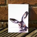 Inky Hare Postcards