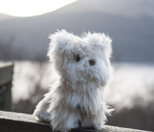 Alpaca Collectible Greyfriar's Bobby/Westie Dog - sculptures