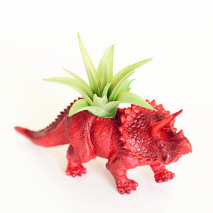 Hand Painted Triceratops Dinosaur Planter With Plant - flowers & plants