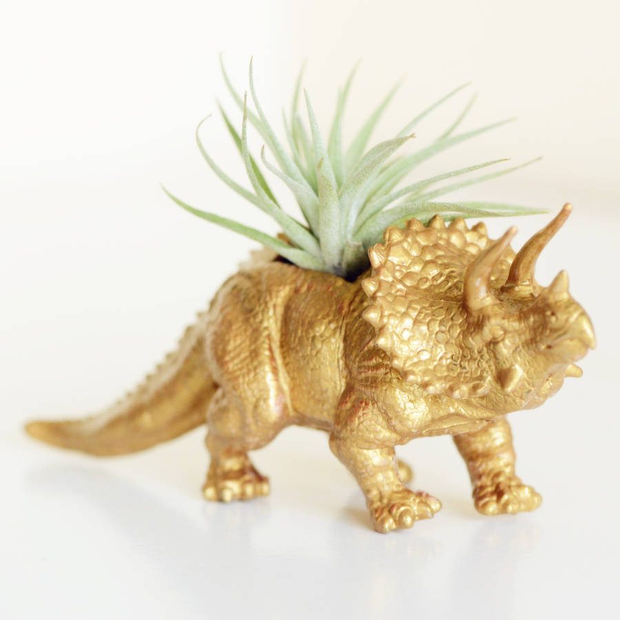 hand painted triceratops dinosaur planter with plant by dingading