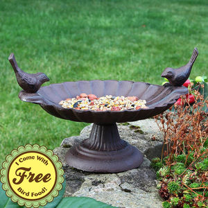 Cast Iron Bird Bath With Free 1kg Bird Food - art & decorations